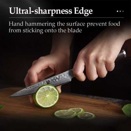 XINZUO 5'' inch Utility Knife Damascus Steel Kitchen Knives Professional Stainless Steel Table Paring Knife Pakka Wood Handle